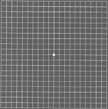 amsler.grid.1