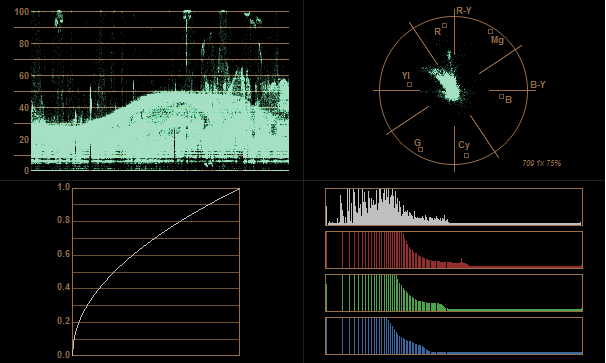 h.264 x2 gamma histogram