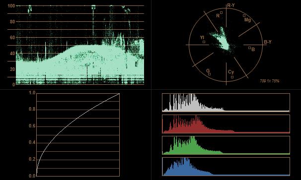 ProRes4444 x2 gamma sonrası histogram